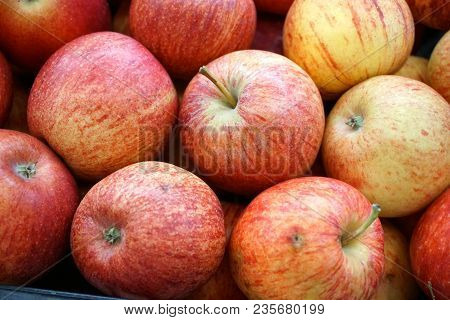 Just Picked Crisp Apples In The Farm Market, Just Picked Apples Were Available.