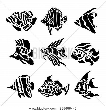 Fish Animal Aquatic Black Silhouette Illustration Vector