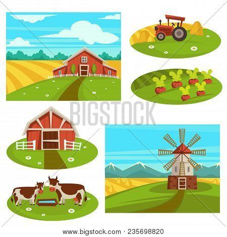 Farm Household Or Farmer Agriculture. Vector Flat Farmer House And Barn On Harvest Field For Wheat O