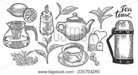 Tea Cup, Teapot, Sugar Bowl, Tea Leaf, Tea Bag, Lemon And Thermos. Vintage Vector Engraving Illustra