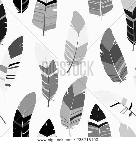 Seamless Feathers Pattern. Scandinavian Black And White Design Background. Stock Vector