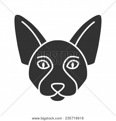 Canadian Sphynx Glyph Icon. Hairless Cat Breed. Silhouette Symbol. Negative Space. Vector Isolated I