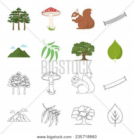 Mountain, Cloud, Tree, Branch, Leaf.forest Set Collection Icons In Cartoon, Outline Style Vector Sym