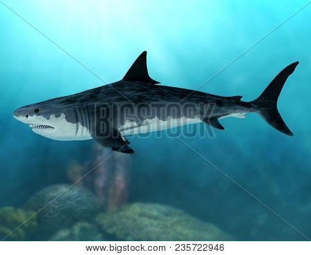 3D render of an extinct Megalodon shark in the seas of the Cenozoic Era poster
