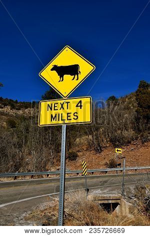 Sign Warning Motorist Of Potential Cattle On The Road In Open Range Land