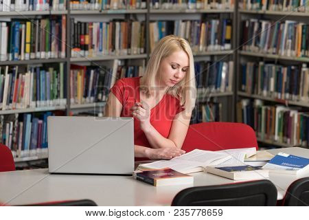 Student Learning In Library
