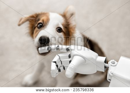 Cyborg Or Robot Hand Is Holding His Finger To A Puppy, Sitting On The Floor. Concept Cybernetic Or R