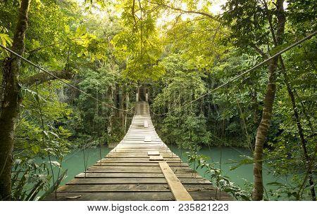 Footbridge Over River In Tranquil Forest In Belize