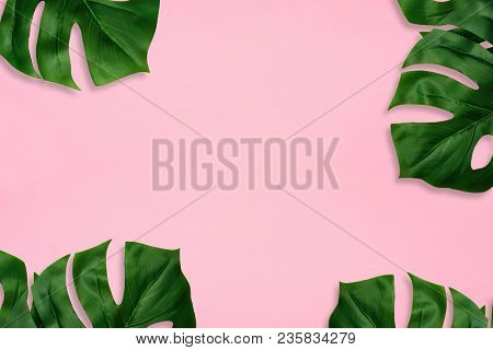Tropical Palm Leaves On A Light Pink Background. Frame. Minimal Nature. Flat Lay. Top View.