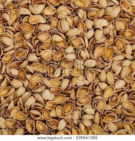 Pistachio Shells. Empty Pistachio Nut Shell. Selective Focus.