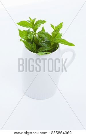 fresh mint tea on white background - food and drink