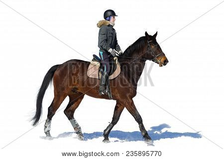 Horseback Riding. A Woman Rides A Horse. Training. Hippodrome. Sunny Day