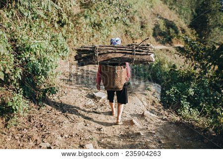 Sa Pa, Vietnam - 03 January, 2018: Back View Of Person Carrying Wood In Basket On Back, Sa Pa, Vietn