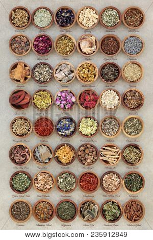 Alternative herbal medicine selection of dried herbs used in chinese and alternative remedies in wooden bowls on natural hemp paper background. With descriptive titles.