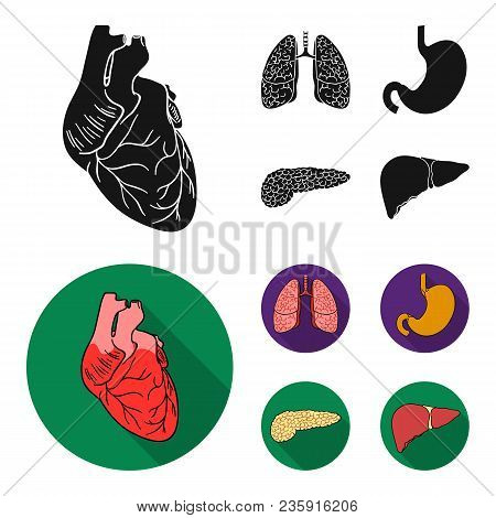 Heart, Lungs, Stomach, Pancreas. Human Organs Set Collection Icons In Black, Flat Style Vector Symbo