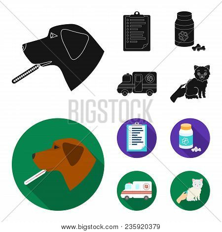 Hospital, Veterinarian, Dog, Thermometer .vet Clinic Set Collection Icons In Black, Flat Style Vecto