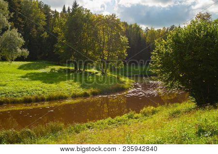 Spring Landscape With Spring Forest Near The River. Spring Trees At The Bank Of The Forest River In