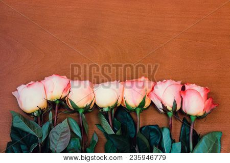 Beautiful Pink Roses Border On Wooden Background
