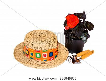 Straw Hat, Flower Seedling And Gardening Tools Isolated On White Background