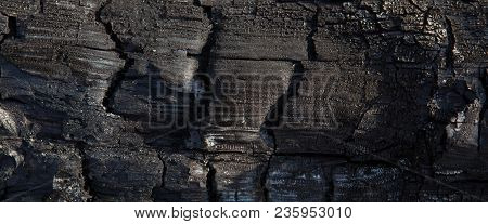 Close-up Of Burnt Logs Texture. Charred Wood Background.