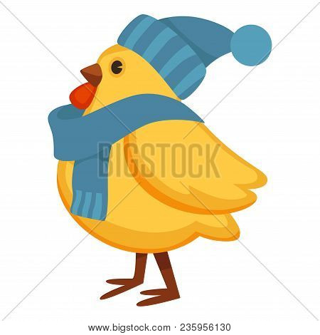 Funny Chicken In Warm Knitted Hat And Scarf. Chubby Hen With Yellow Plumage And Winter Accessories.