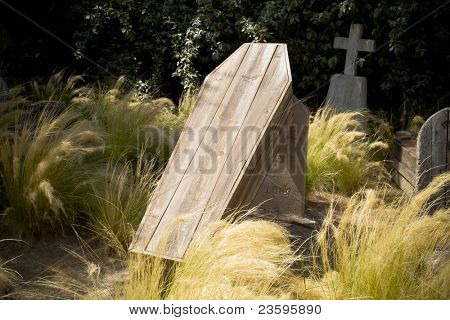 cementery with wooden coffins comming out of the ground