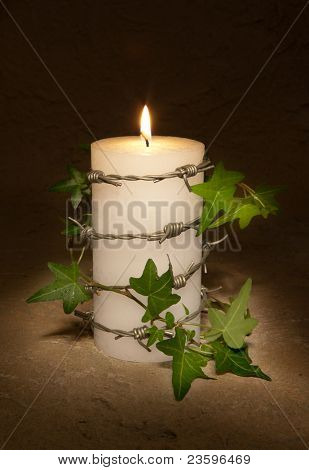 Barbwire and ivy curling around a burning candle, symbol of Amnesty International and civil rights