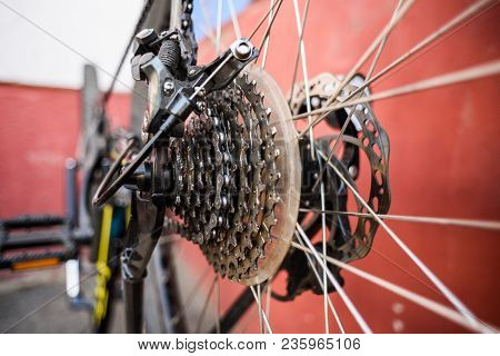 Mountain Bicycle Repairing. Mtb Rear Wheel Disk Brakes And Chain Closeup