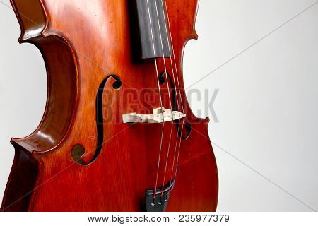 Old Double Bass C Bout And Belly On White Background