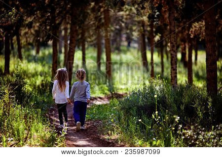 Two Little Sisters Walking And Playing On The Road In Countryside On A Warm Summer Sunset. Cute Litt