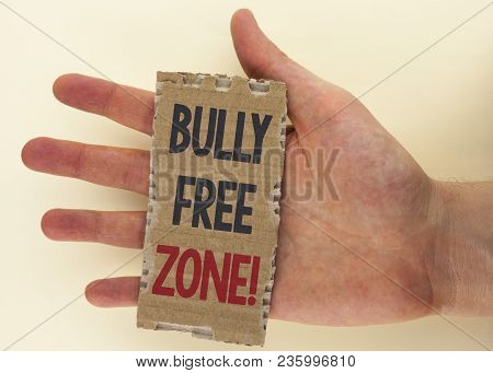 Conceptual Hand Writing Showing Bully Free Zone Motivational Call. Business Photo Text Creating Abus