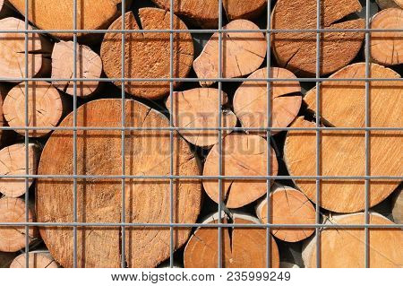 A Pattern From The Ends Of Wooden Beams Of Circular Cross-section. The Cross-sectional Background Is