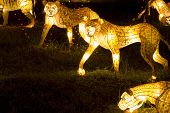 Image of lighted up tiger and leopard lanterns poster