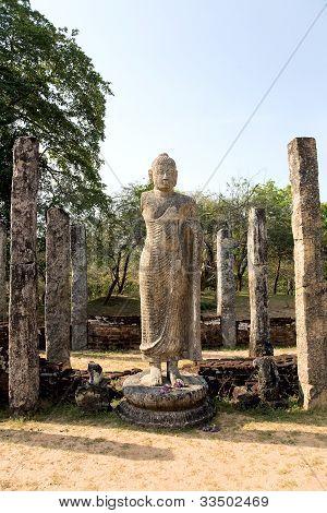 Ancient Buddha Statue  In Polonnaruwa - Vatadage Temple, Sri Lanka
