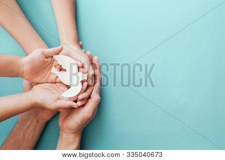 Adult And Child Hands Holding White Dove Bird On Blue Background, International Day Of Peace Or Worl