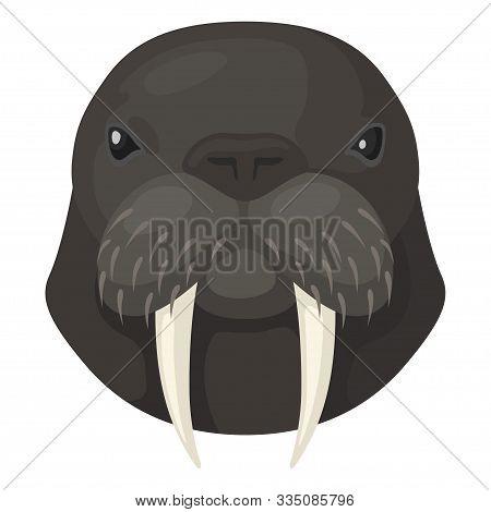 Walrus Icon, Arctic Sea Animal Of Wildlife