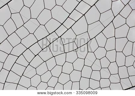 Magnified View Of The Detail In A  Dragonfly Wing