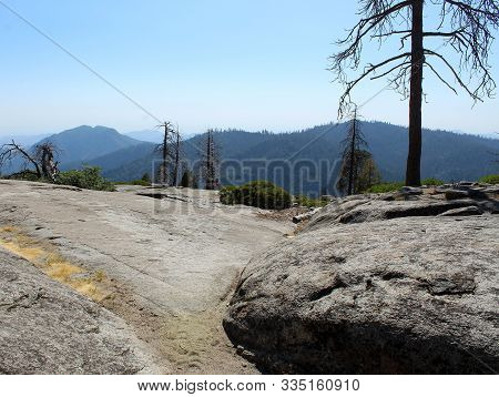 Flat Rocks With Tall Trees And Mountain View
