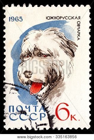 Soviet Union (sssr) Russia - Circa 1965. Postage Stamp Printed In Soviet Union And Part Of A Series
