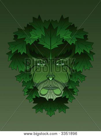 Greenman Maple