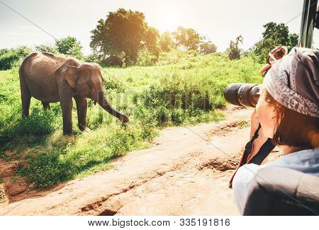 Woman Photographer Takes A Picture With Professional Camera With Telephoto Lens From Touristic Vehic