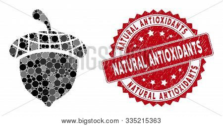 Mosaic Acorn And Rubber Stamp Seal With Natural Antioxidants Text. Mosaic Vector Is Designed With Ac
