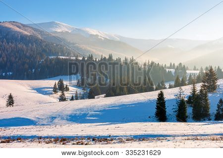 Winter Fairy Tale In Carpathian Mountains. Snow Capped Peak In The Distance Spruce Forest On Hills.
