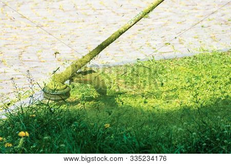 Crazy Grass Cutting In The Park With Gasoline Trimmer. Brush Cutter With Nylon Line Head Trimming Gr