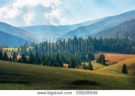 Rural Area Of Carpathian Mountains In Autumn. Wonderful Scenery Of Borzhava Mountains In Dappled Lig