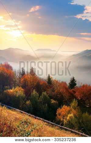 Wonderful Autumn Sunrise In Mountains. Misty Atmosphere With Clouds On The Sky. Trees On The Hillsid