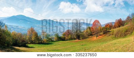 Beautiful Autumn Morning In Mountains. Misty Atmosphere With Clouds On The Sky. Trees On The Hillsid