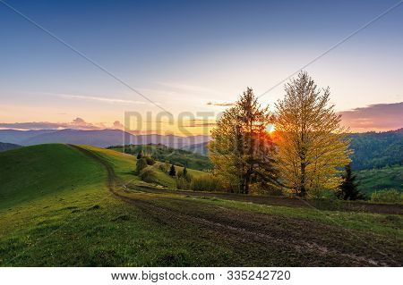 Carpathian Countryside At Sunset In Springtime. Beautiful Rural Scenery With Tree By The Road. Dirt