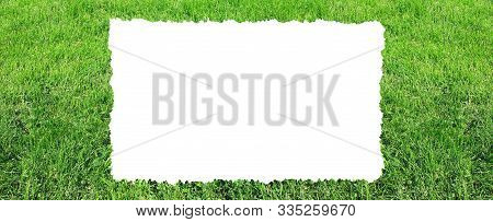 Green Grass Nature Background. Empty White Frame In The Middle Of Meadow, Green Grass Edge Frame. Pa