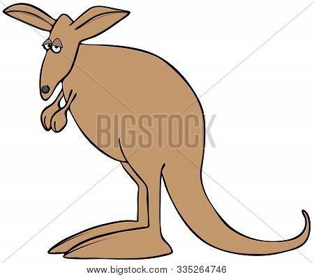Illustration Of A Sad Brown Kangaroo Standing On Its Extra Large Feet.